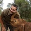 Laurens de Groot: De oorlog om ivoor