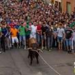 Wreed vermaak tijdens Spaans stierenfeest in Benavente