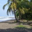 Levenslang voor moord op dierenbeschermer Costa Rica