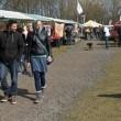 Weekendtip: Zwerfdieren Festival alsnog op 2 juli in Zeewolde