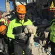 Dierenhulp zonder Grenzen gaat helpen na aardbeving Italië