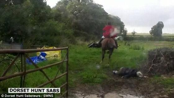 vossenjager te paard
