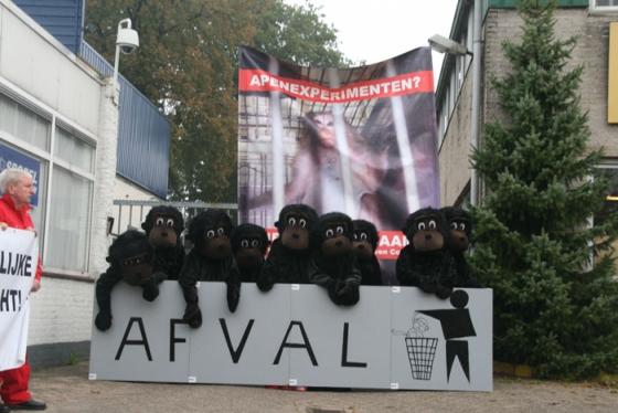 actie tegen dierproeven