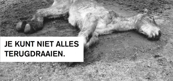 dierenpolitie-advertentie