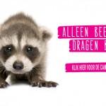 bont voor dieren - Fur Free Friday