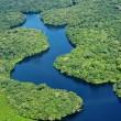 Koraalrif Amazonerivier bedreigd