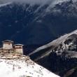 Bhutan eerste volledig biologische natie ter wereld