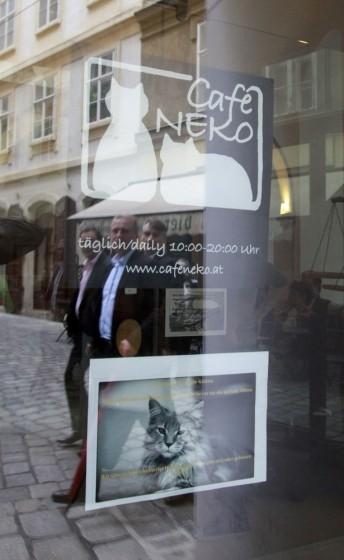 Cafe Neko 02