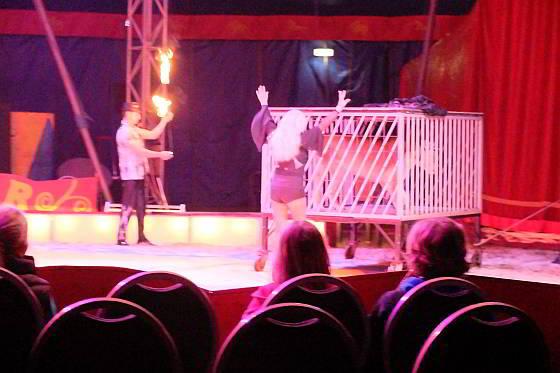 Circus Renz Berlin - leeuwin tijdens show