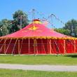 Warschau verbiedt gebruik van dieren in circussen