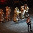 #GNvdD: New York wil verbod optredens met exotische dieren