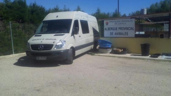 asiel Cuenca