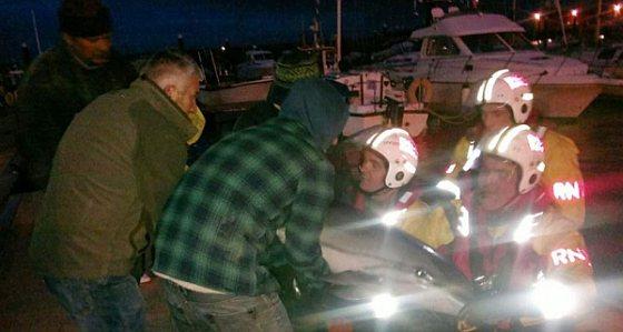 In Ierland gestrande dolfijn gered