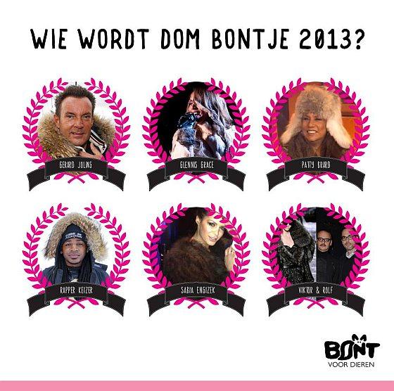 Dom bontje 2013