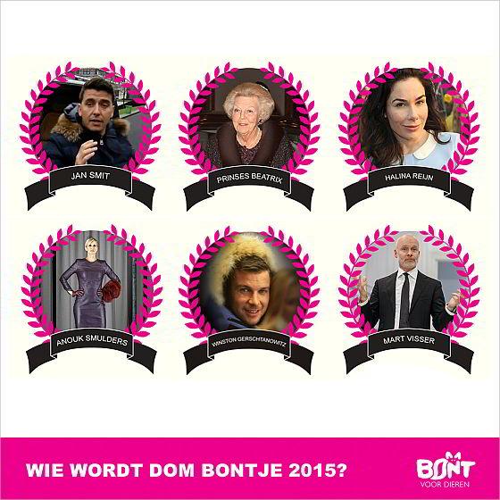 Dom Bontje 2015