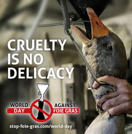 Wereld Dag tegen Foie Gras