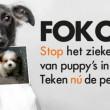 Regionale omroepen weigeren spotjes Fok Off van World Animal Protection