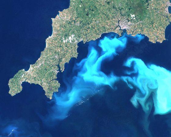 Fytoplankton-groei