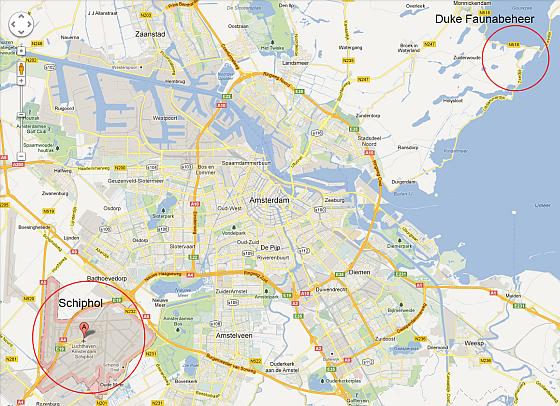 Ganzenvergassing Schiphol
