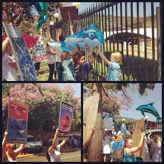 Global Taiji Japan Action Day For Dolphins Zuid-Afrika