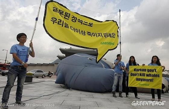 Greenpeace-protest tijdens de besprekingen over walvisjacht