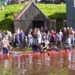 Faeröerders houden vast aan jaarlijkse wrede griendjacht