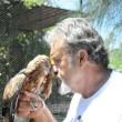 Opvolger gezocht: Australisch dierenopvangcentrum te geef