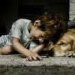 Hond en mens zijn samen geëvolueerd
