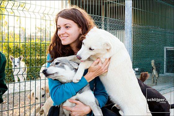 Honden met verzorger - Roemenië
