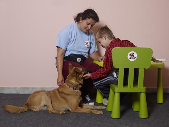 Zwerfhonden helpen kinderen