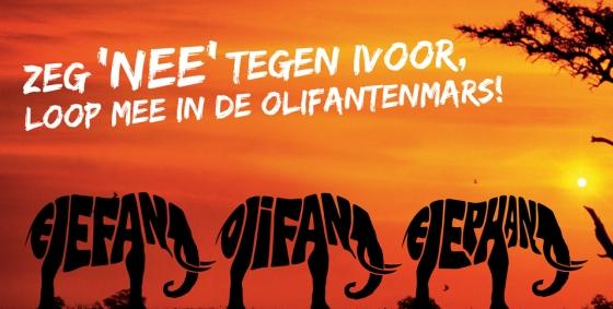 IFAW olifantenmars