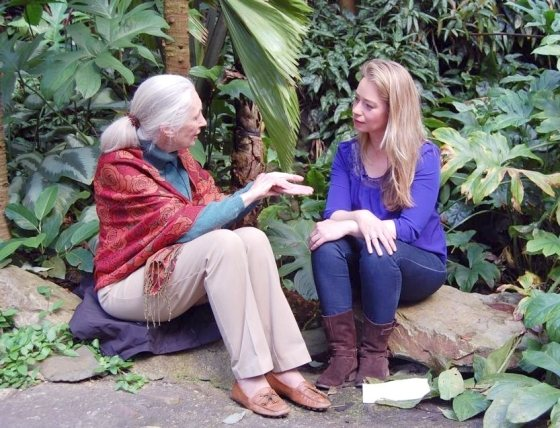 Interview Jane Goodall