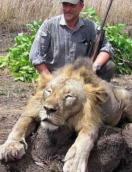 Ontslag dierenarts