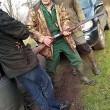 Bert van Straten: Hondengedragscentrum Pack Leader beschoten – deel 3