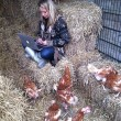 Karen's blog – Het verhaal van de kip en het ei