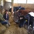 RTV Noord-Holland: Bij de biologisch-dynamische boer
