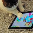 App ontwikkeld voor observeren van dieren
