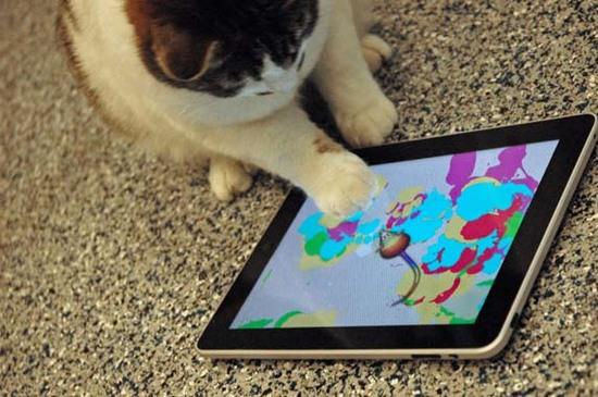 Kat iPad
