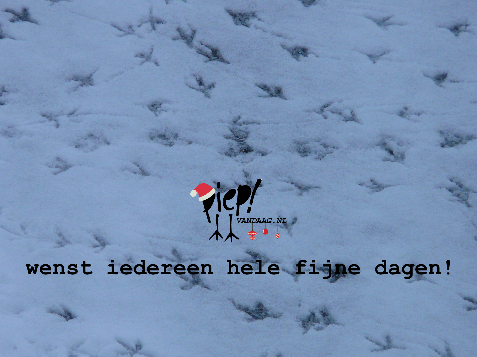 PiepVandaag kerstwens