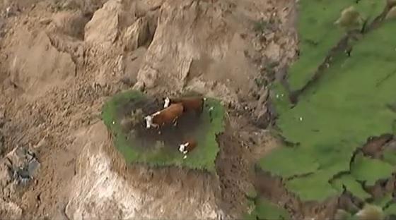 aardbeving Nieuw-Zeeland