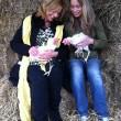 Karen's blog – De 500ste legkip is gered!