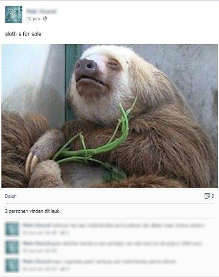Luiaards - dierenhandelaar