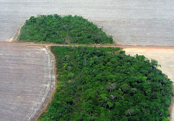 Mato Grosso - Brazilië