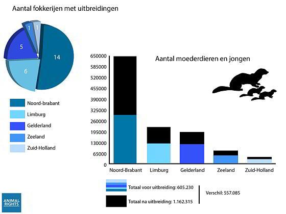Nertsen in Nederland - vergunningen