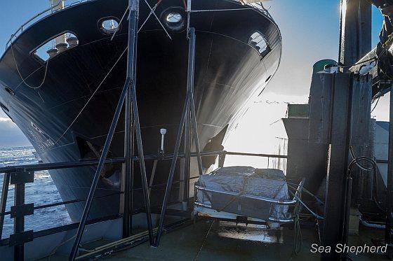 Nisshin maru ramt boot Sea Shepherd