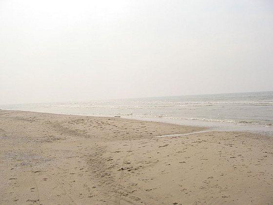 Noordzeekust