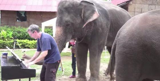 olifanten piano