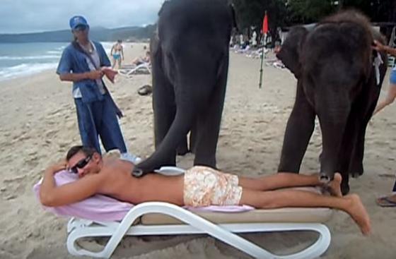 olifantenmassage