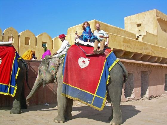 verbod op olifantenritjes