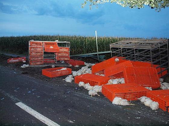 Ongeval vrachtwagen Duitsland